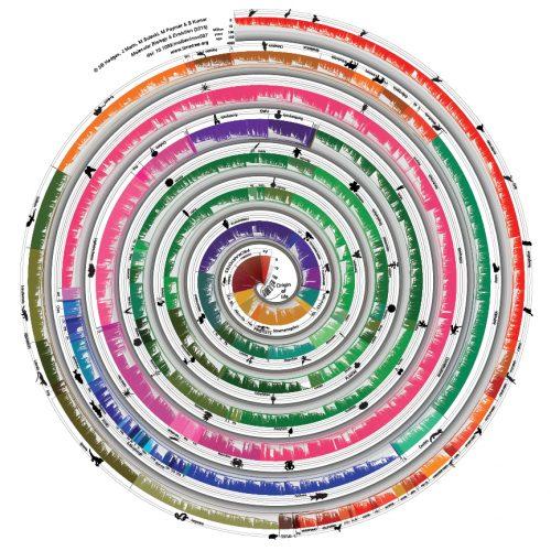 Spiral timetree