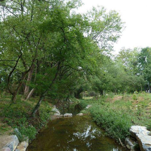 Restoring an urban stream (after) (7557277790)